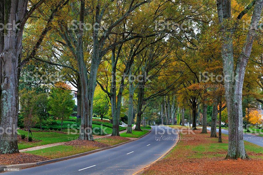 Road in the Neighborhood stock photo