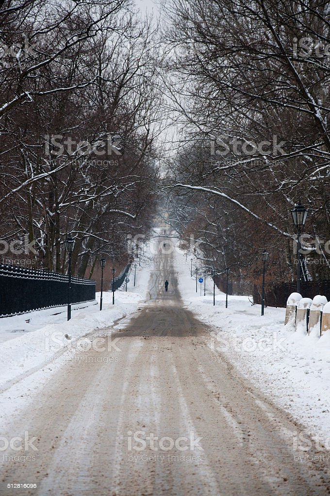 Road in the snow stock photo
