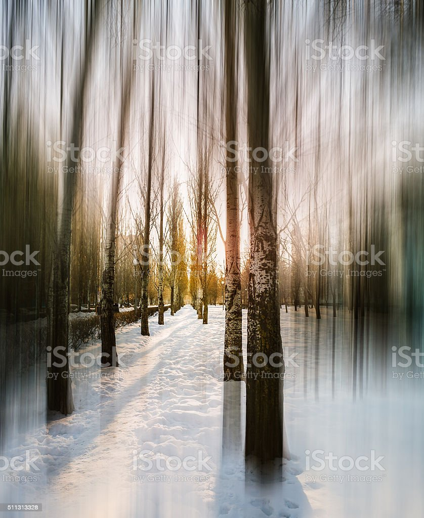 Road in the spring. stock photo