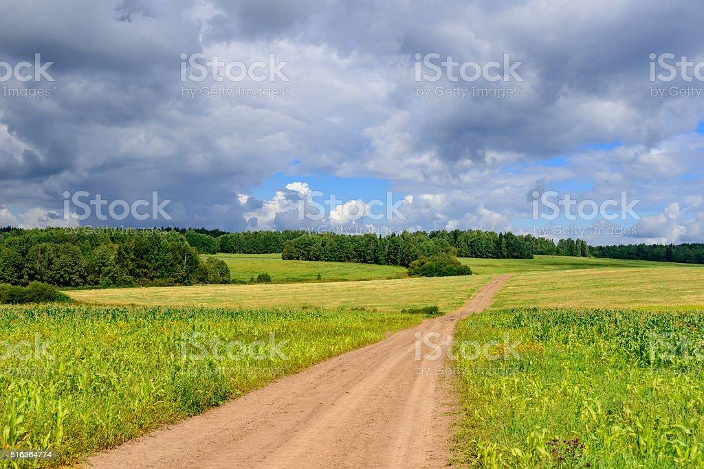 Road in weak corn filds in Siberian countriside stock photo