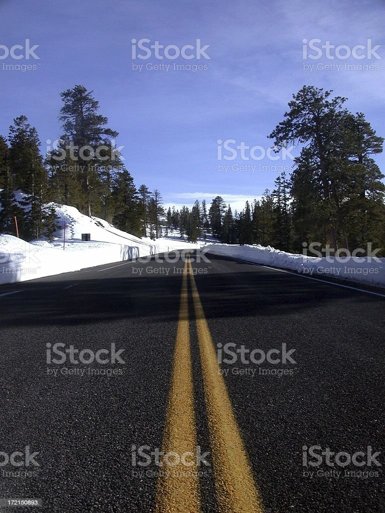 Road in Winter royalty-free stock photo