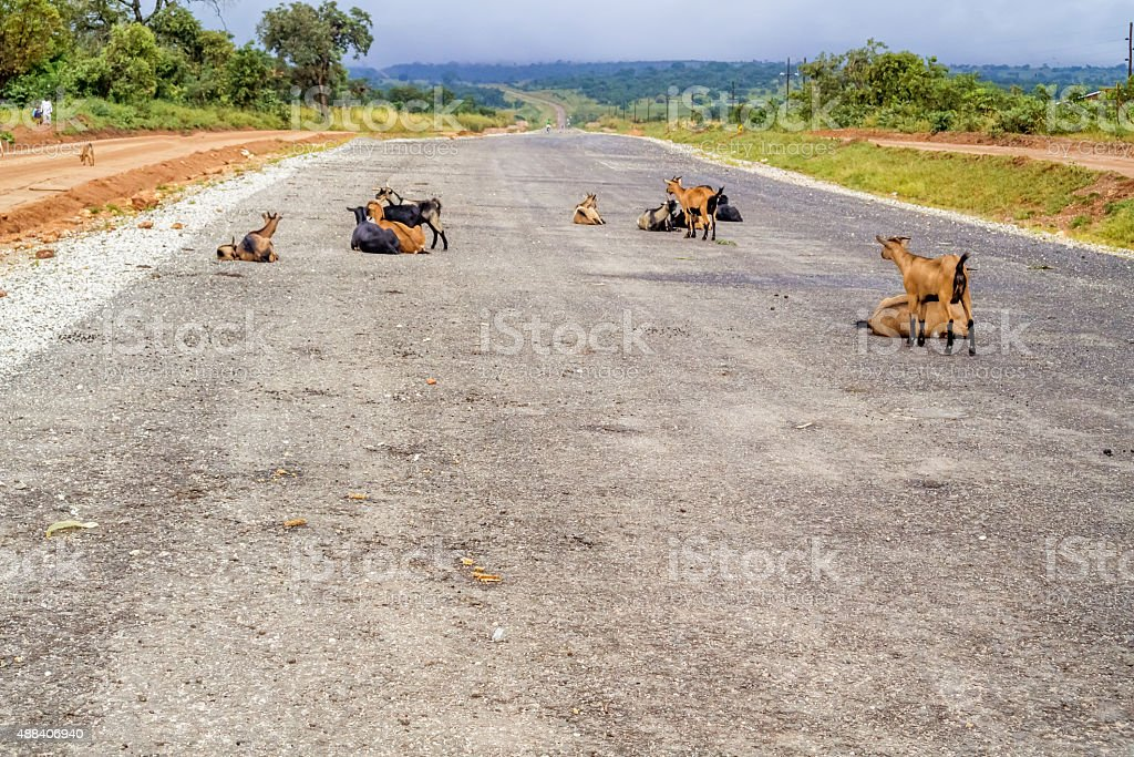 Road in Zambia stock photo