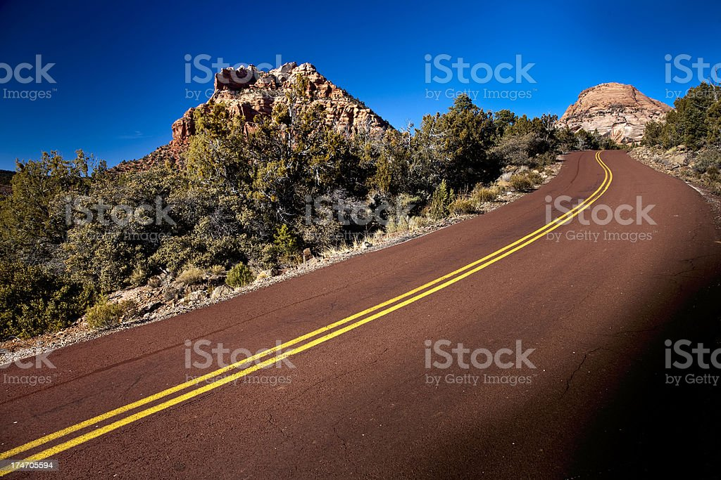 Road in Zion National Park. stock photo
