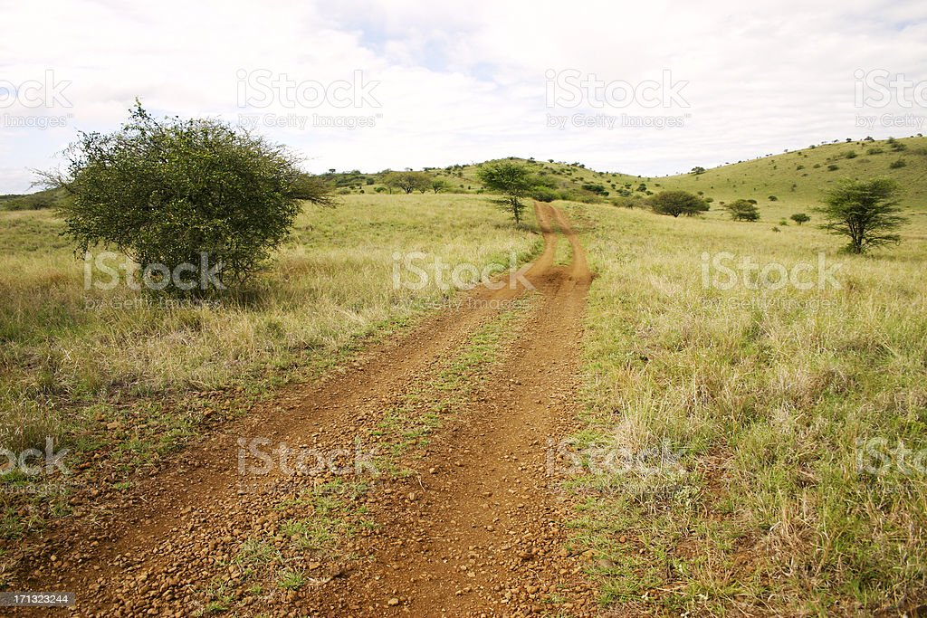 Road inside Nechisar National Park stock photo