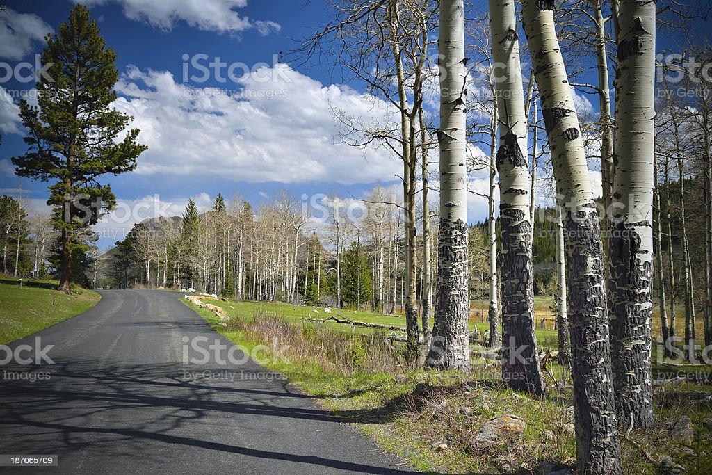 Road Into Rocky Mountain National Park royalty-free stock photo