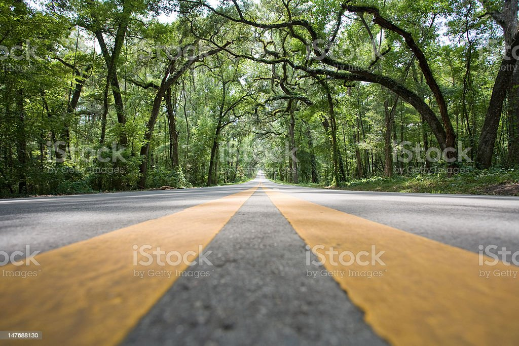 Road level yellow stripes royalty-free stock photo