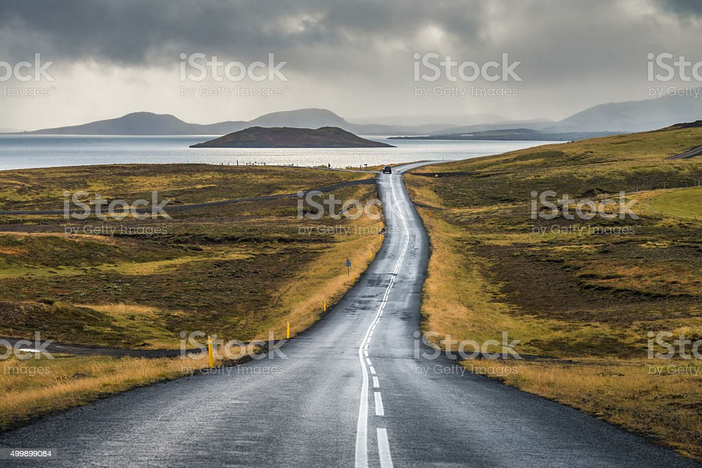 Road line perspective around with plant in Autumn season stock photo