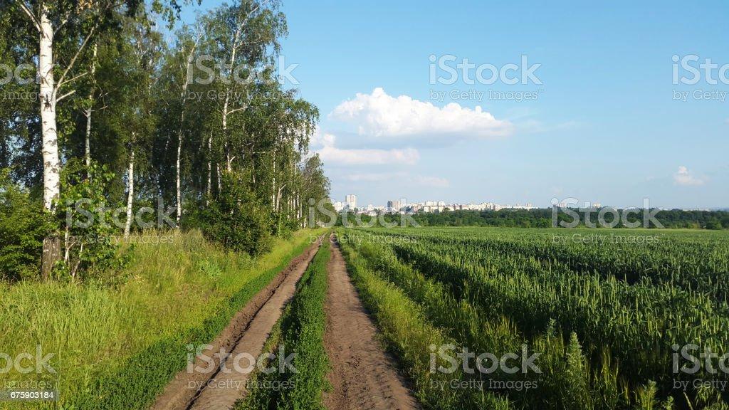road near green field - to the city stock photo