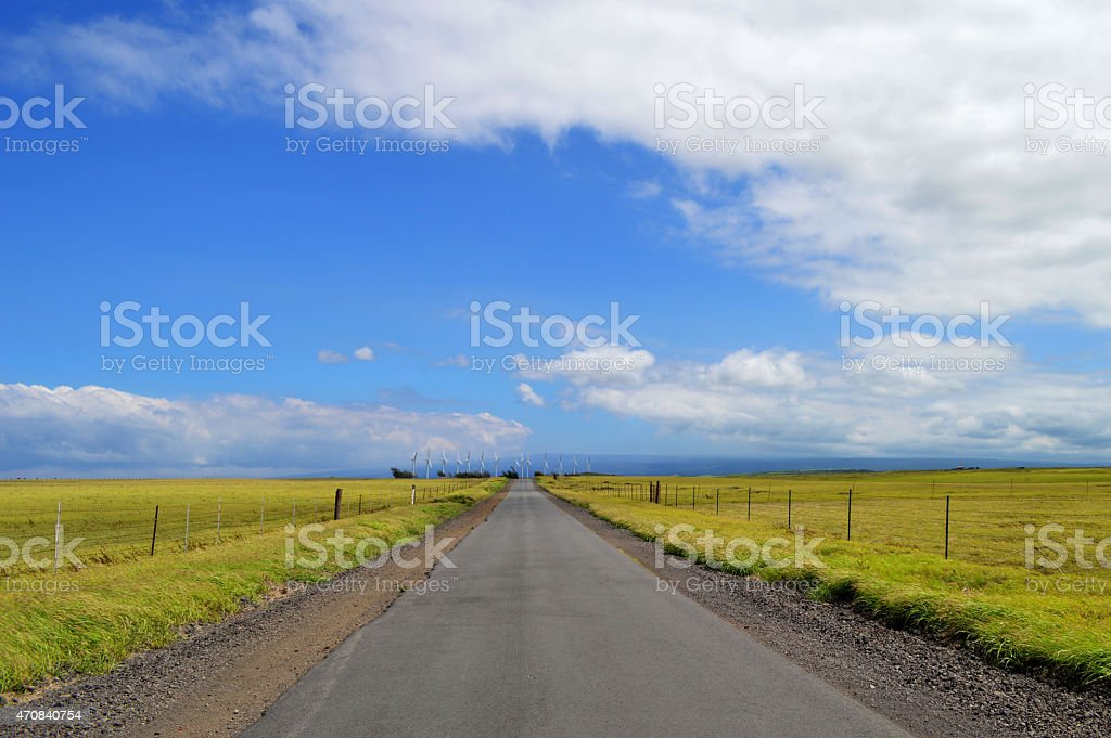Road near South Point, in Big Island stock photo