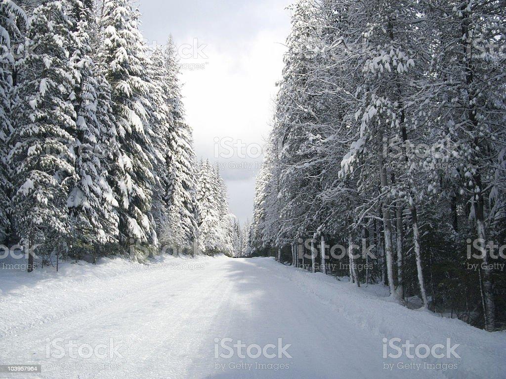 road north royalty-free stock photo