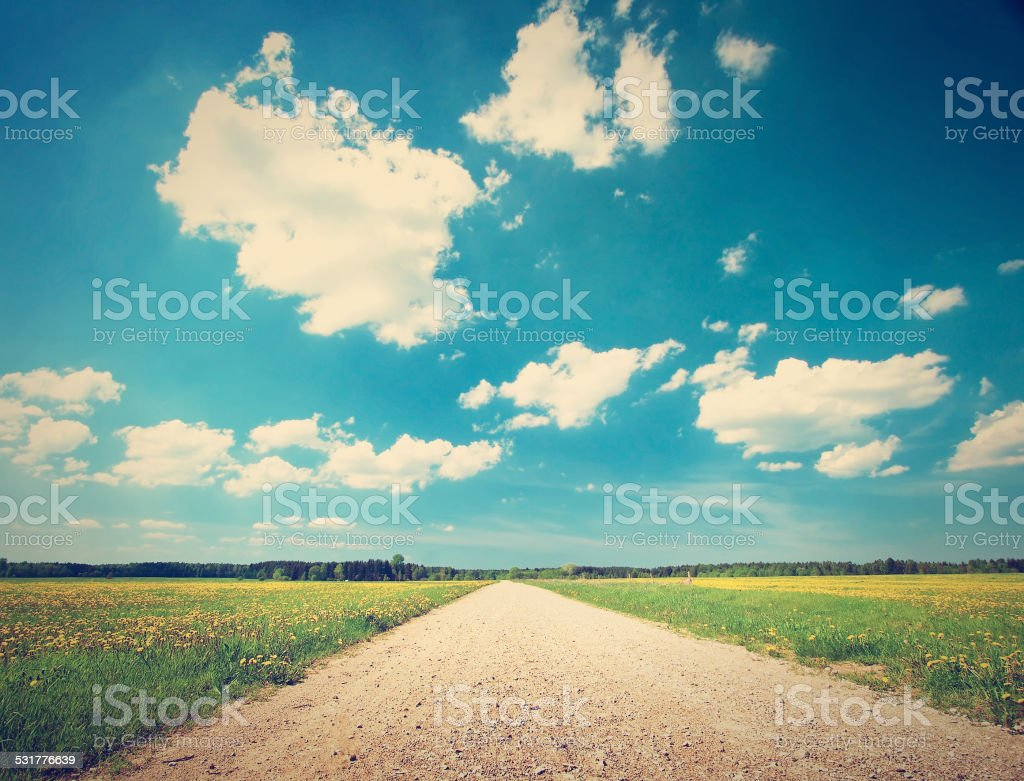 Road on dandelion field stock photo