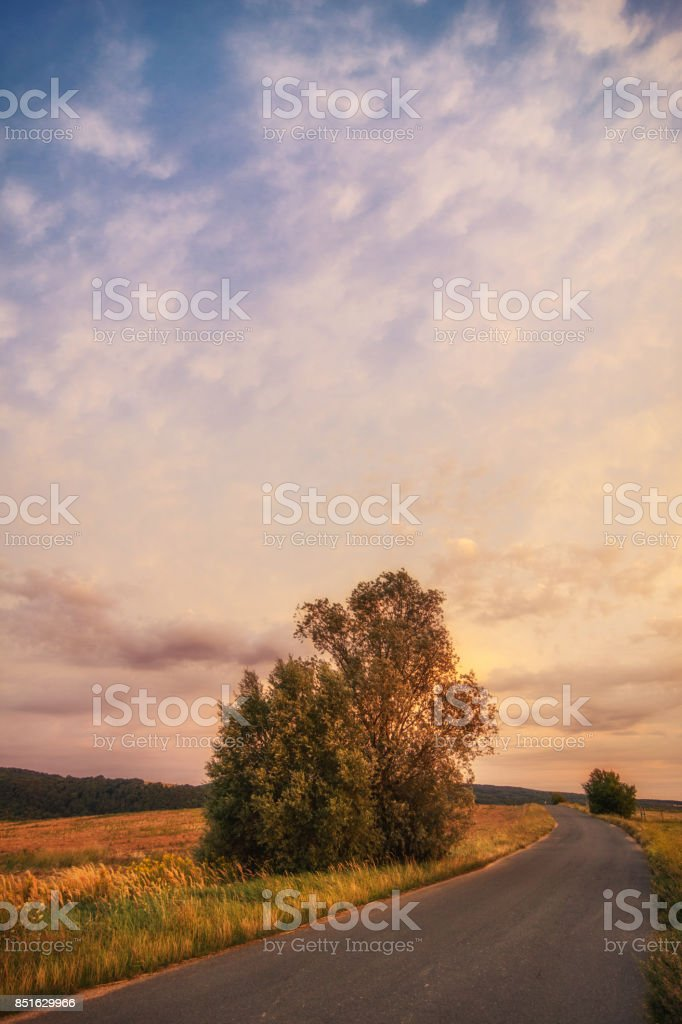 Road on the hill stock photo