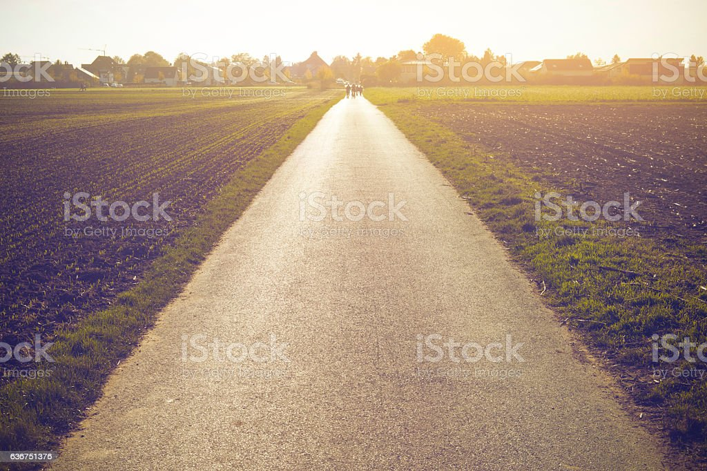 Road on vanishing point at sunset in Germany stock photo