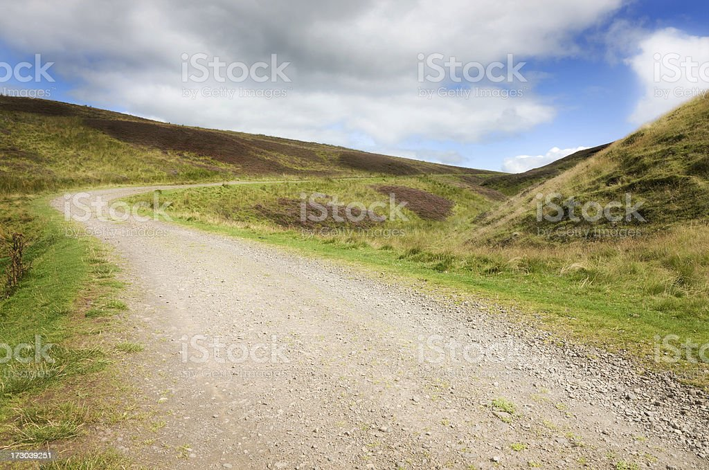 Road Over Empty Moor royalty-free stock photo