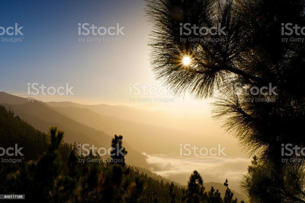 TF24 Road, Parque Natural, El Teide, Tenerife (Mirador Chipeque) stock photo