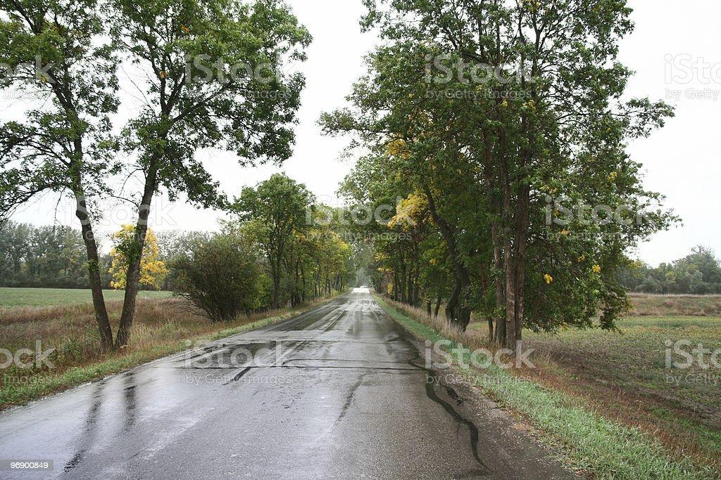 Road Reflections on a Rainy Day stock photo