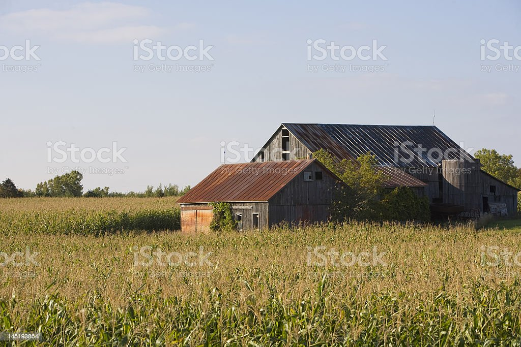 Road side barn stock photo