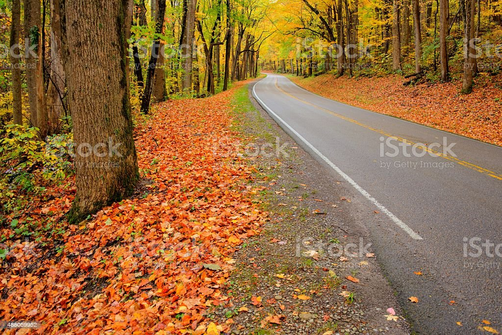 Road though Great Smoky Mountains National Park stock photo