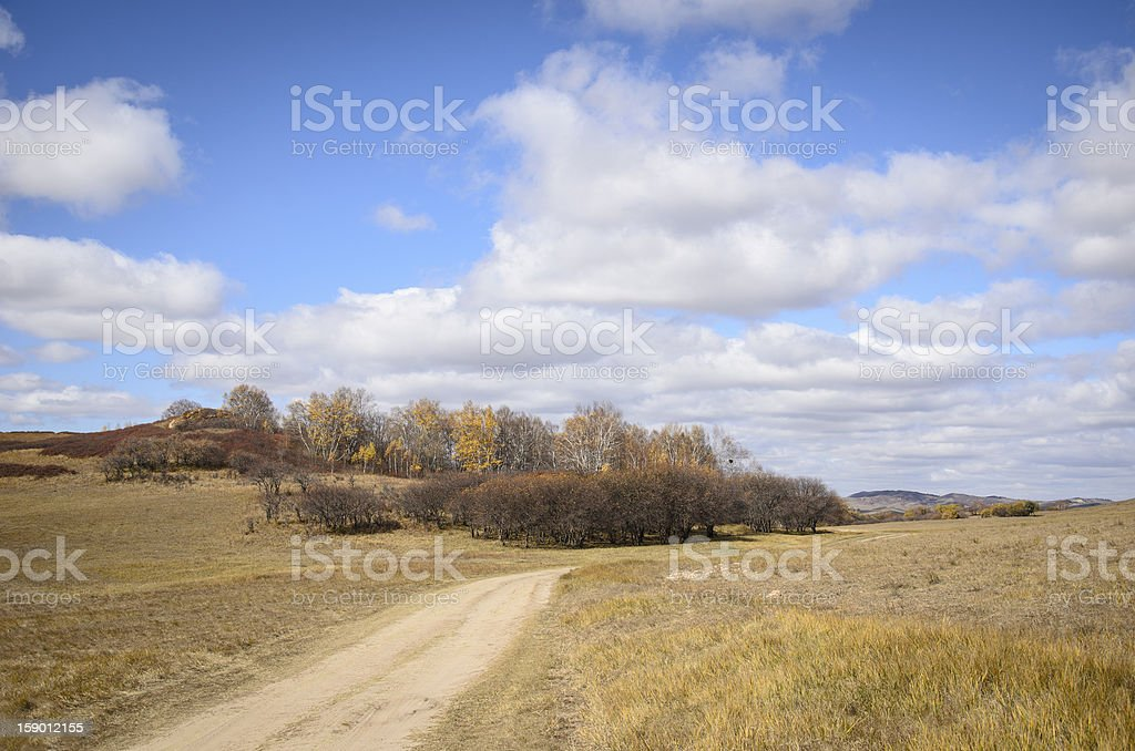 Road through a grassy plain royalty-free stock photo