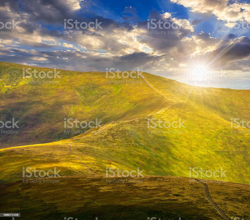 road through a meadow on hillside at sunset stock photo