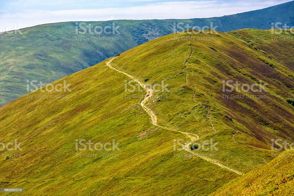 road through a meadow on hillside stock photo