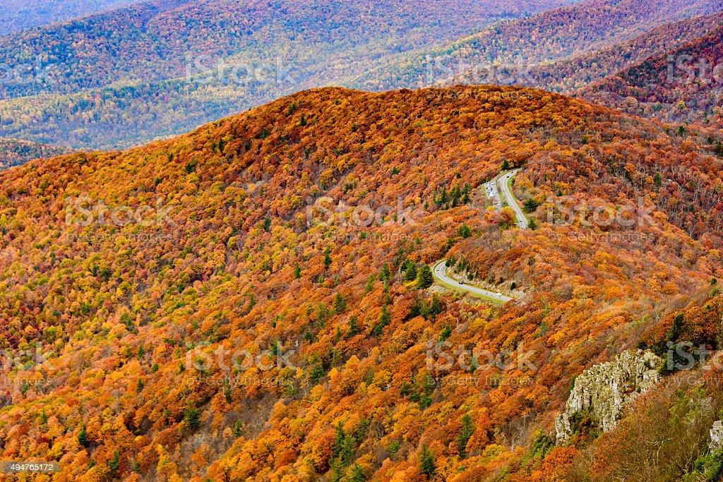 XXXL: Road through colorful autumn forest stock photo