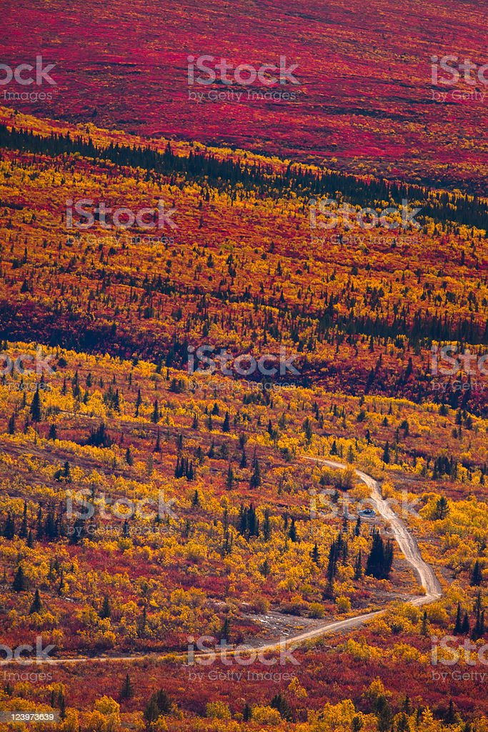 Road through fall colored tundra royalty-free stock photo