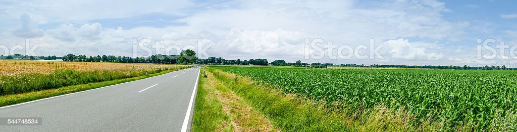 Road through field panorama stock photo