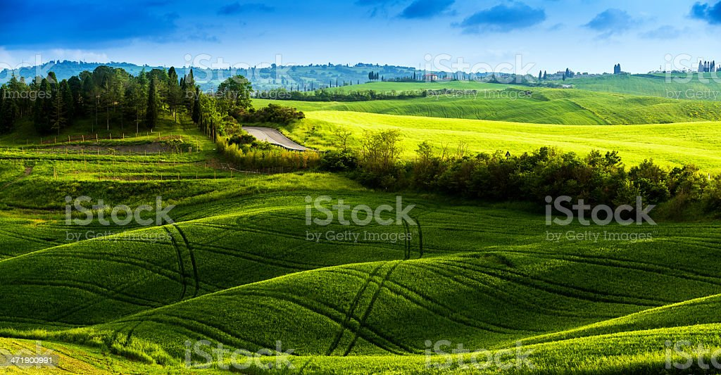 Road through the fields of Tuscany stock photo