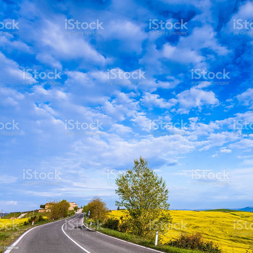 Road through the Fields royalty-free stock photo
