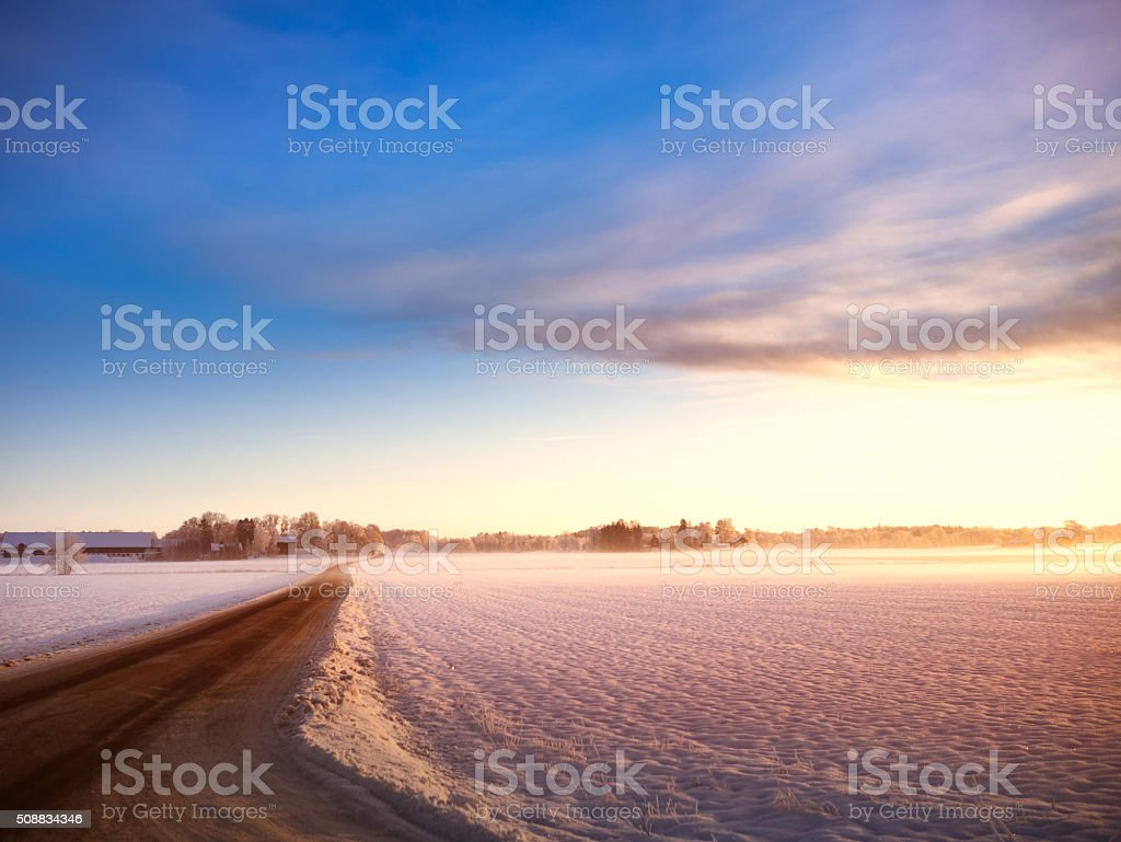 Road through winterlandscape in sweden stock photo
