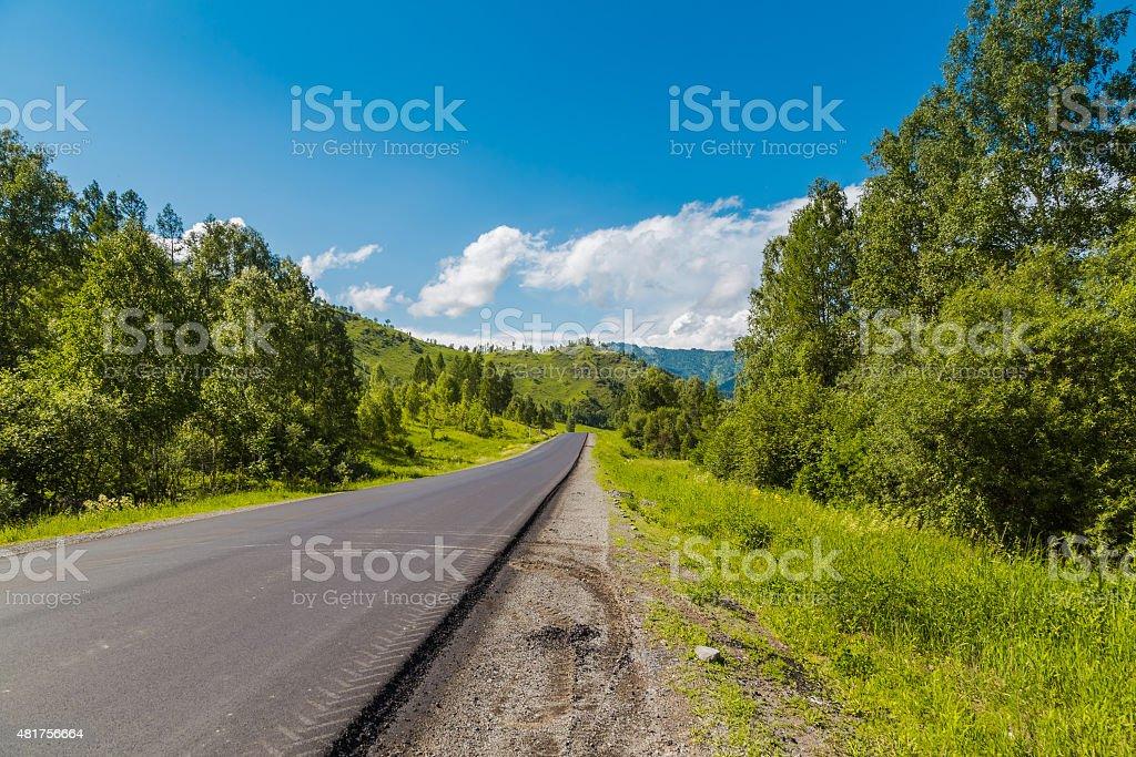 Road to Altai Mountains, Siberia, Russia. stock photo