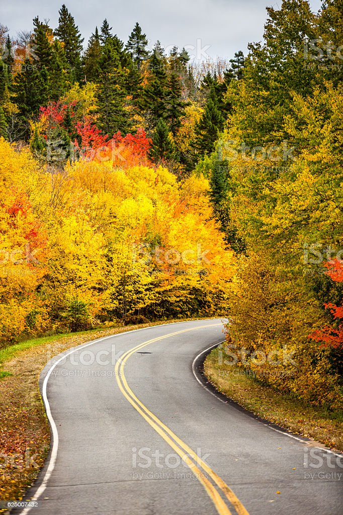Road to Autumn colors stock photo