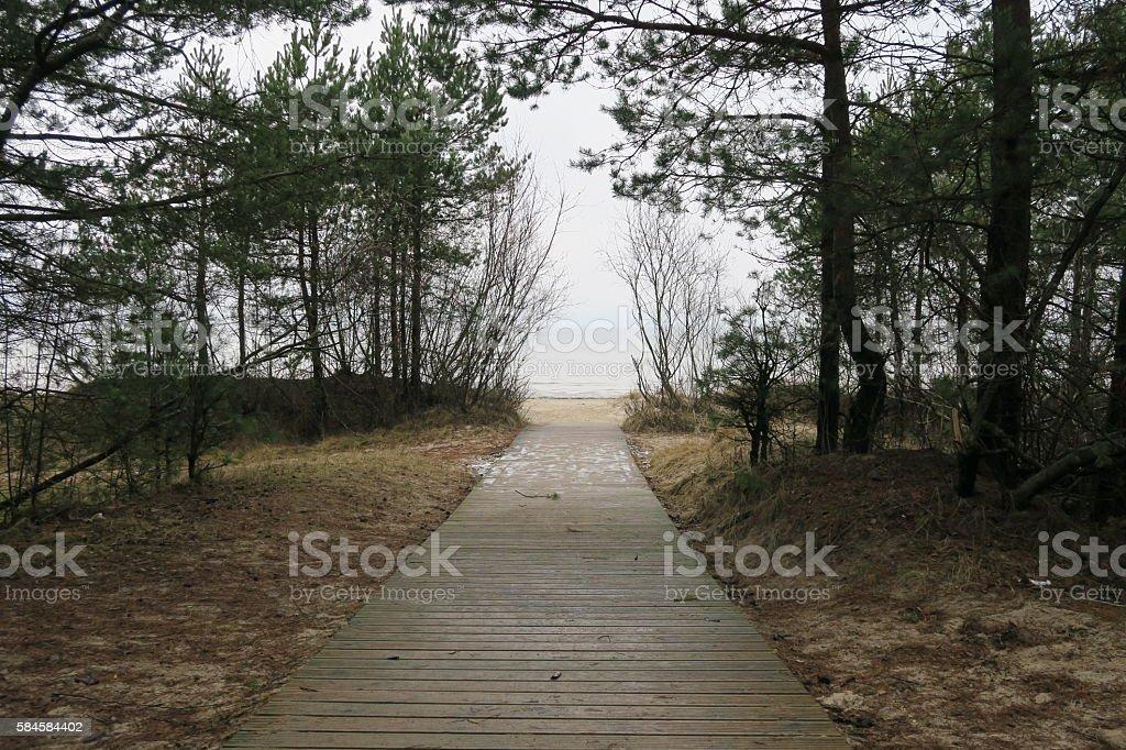 Road to beach stock photo