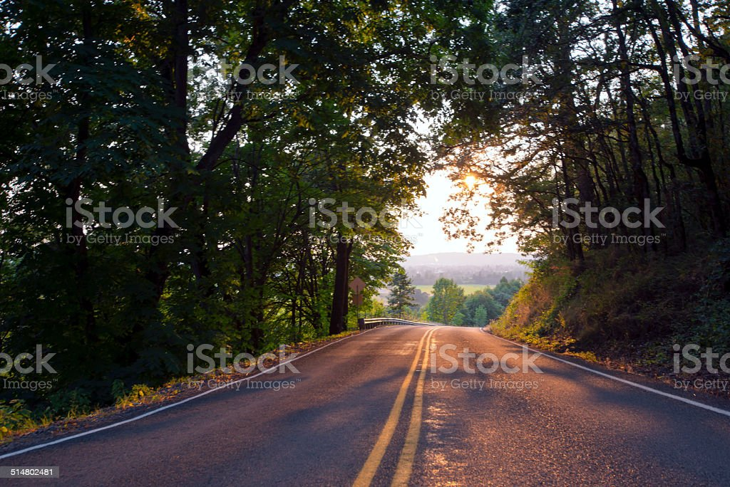 road to beautiful landscape in sunlight in shadows of trees stock photo