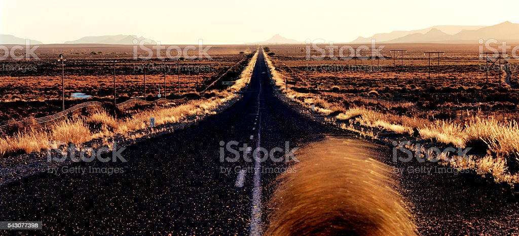 Road to Calvinia with tumble weed, Northern Cape, South Africa stock photo
