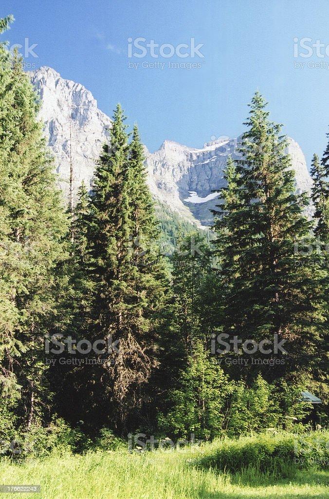 Road to Glacier royalty-free stock photo
