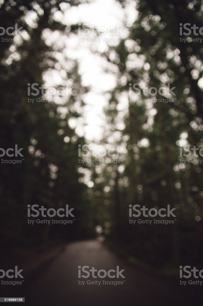 Road to hiking trail stock photo