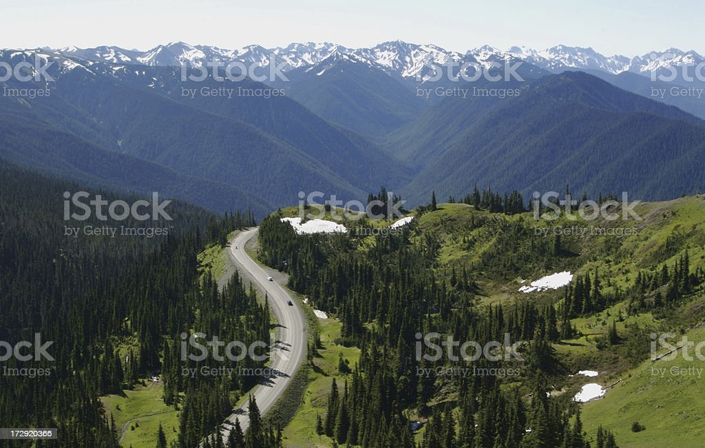 Road to Hurricane Ridge in Olympic National Park stock photo