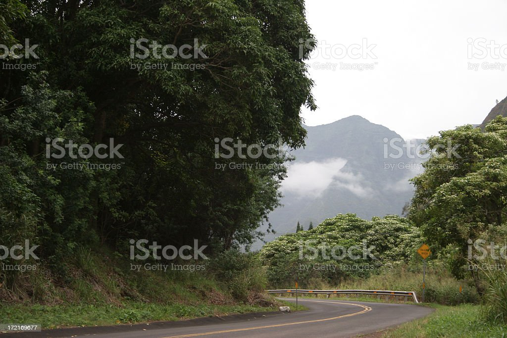 Road to Iao Valley stock photo