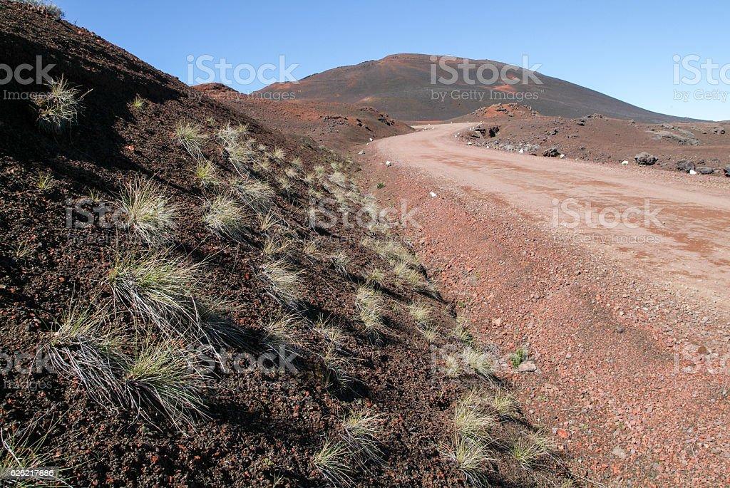 Road to Piton de la Fournaise volcano on La Reunion stock photo