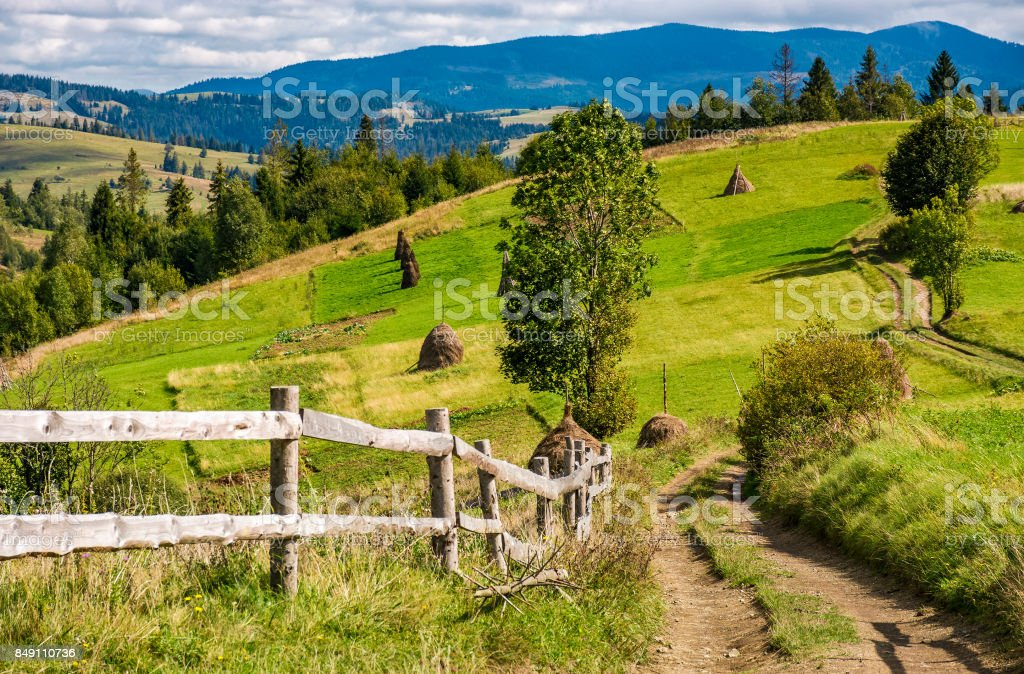 road to rural fields on hills in mountainous area stock photo