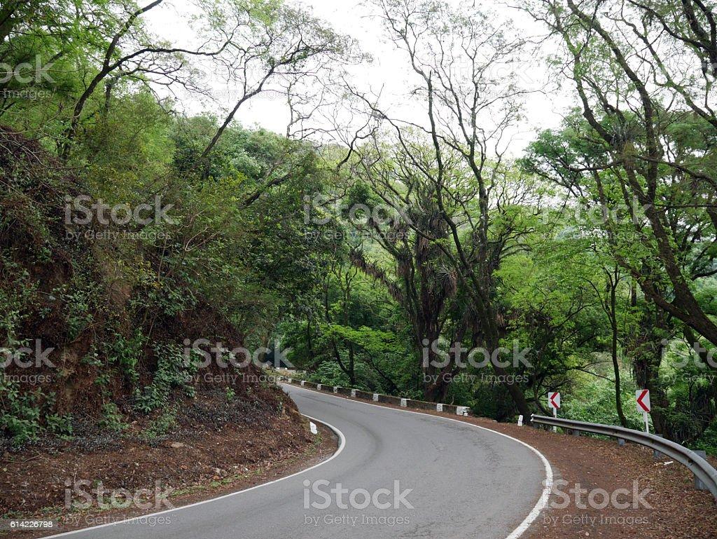 Road to San Javier stock photo