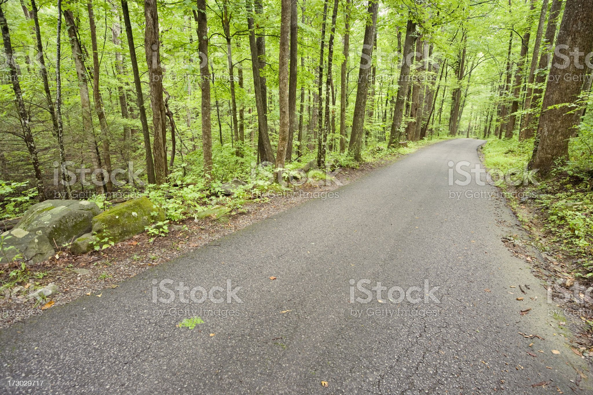 Road to Serenity series royalty-free stock photo
