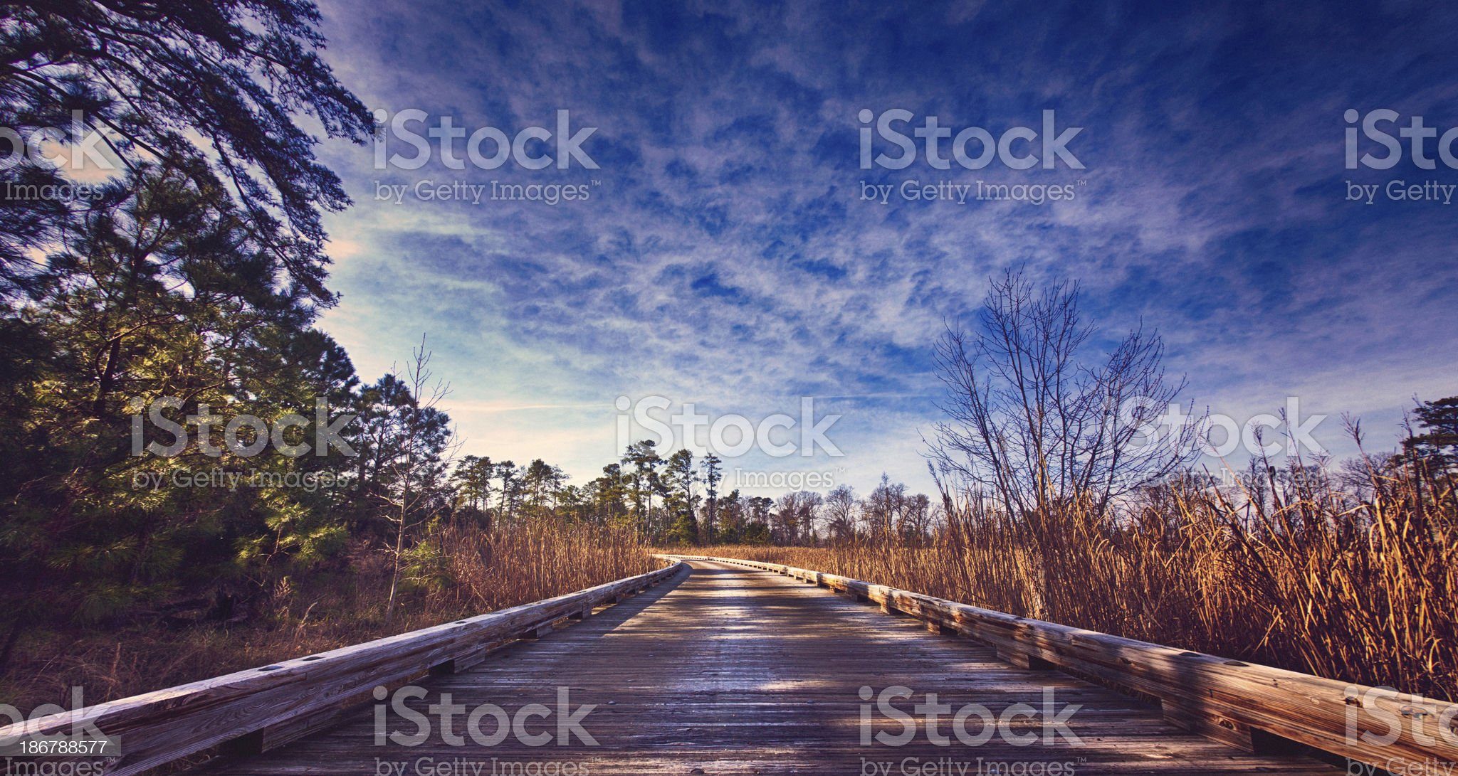 Road to the Future royalty-free stock photo