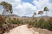 Road to the Zafinamiry Villages, Madagascar