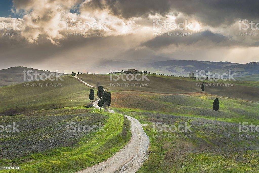 Road to Tuscan farmhouse, Italy stock photo