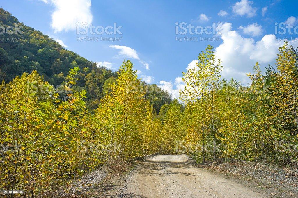 road to yedigoller lakes at mengen bolu turkey stock photo