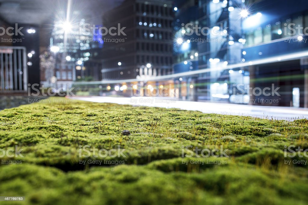 road traffic and the night view with grass or moss stock photo