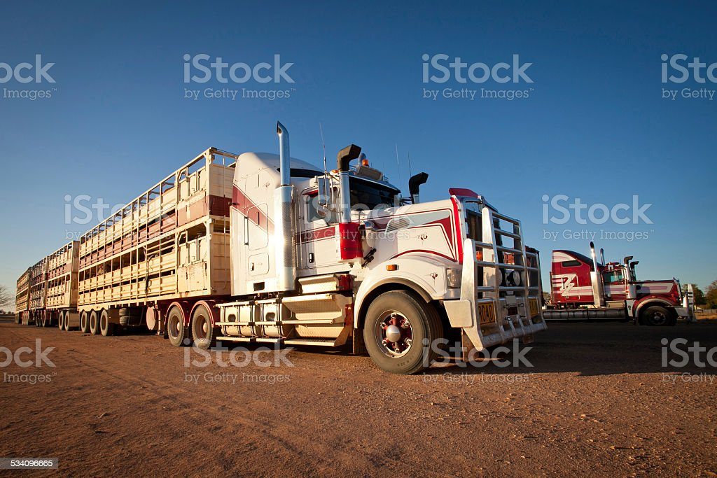 Road Train Cattle Trucks of Outback Australia stock photo